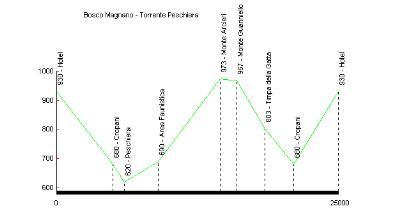 Profilo altimetrico Bosco Magnano